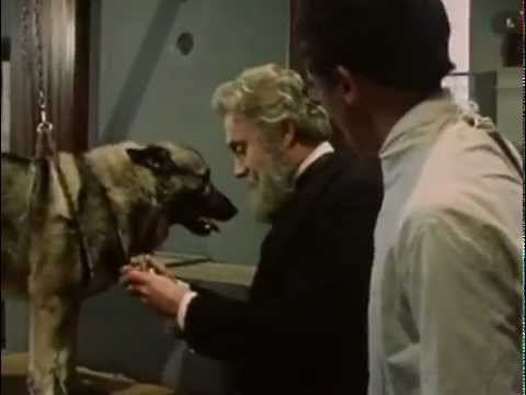 Ivan Pavlov-Classical Conditioning